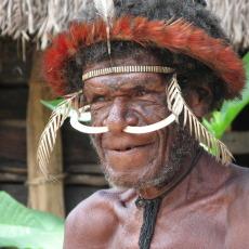 Папуа Новая Гвинея, Индонезия